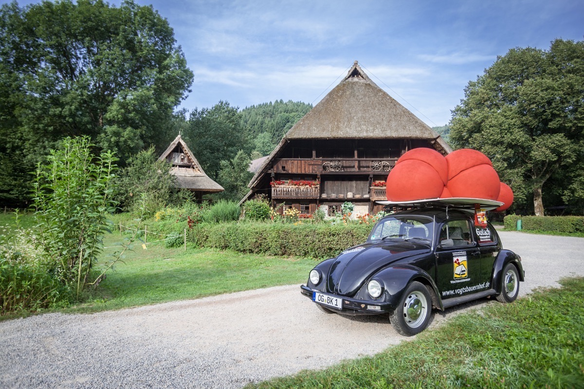 """Bubblehat""-Beetle in front of the Vogtsbauernhof"